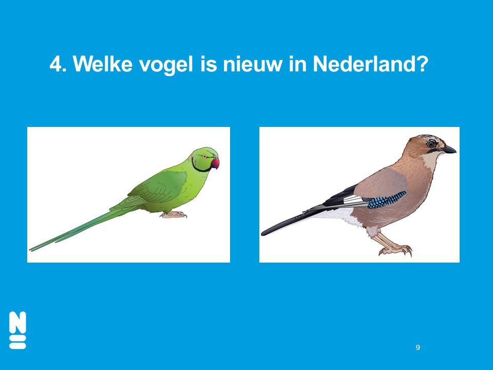 4. Welke vogel is nieuw in Nederland