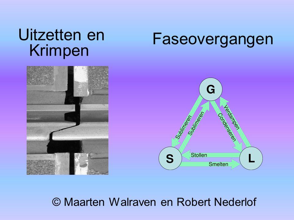 © Maarten Walraven en Robert Nederlof