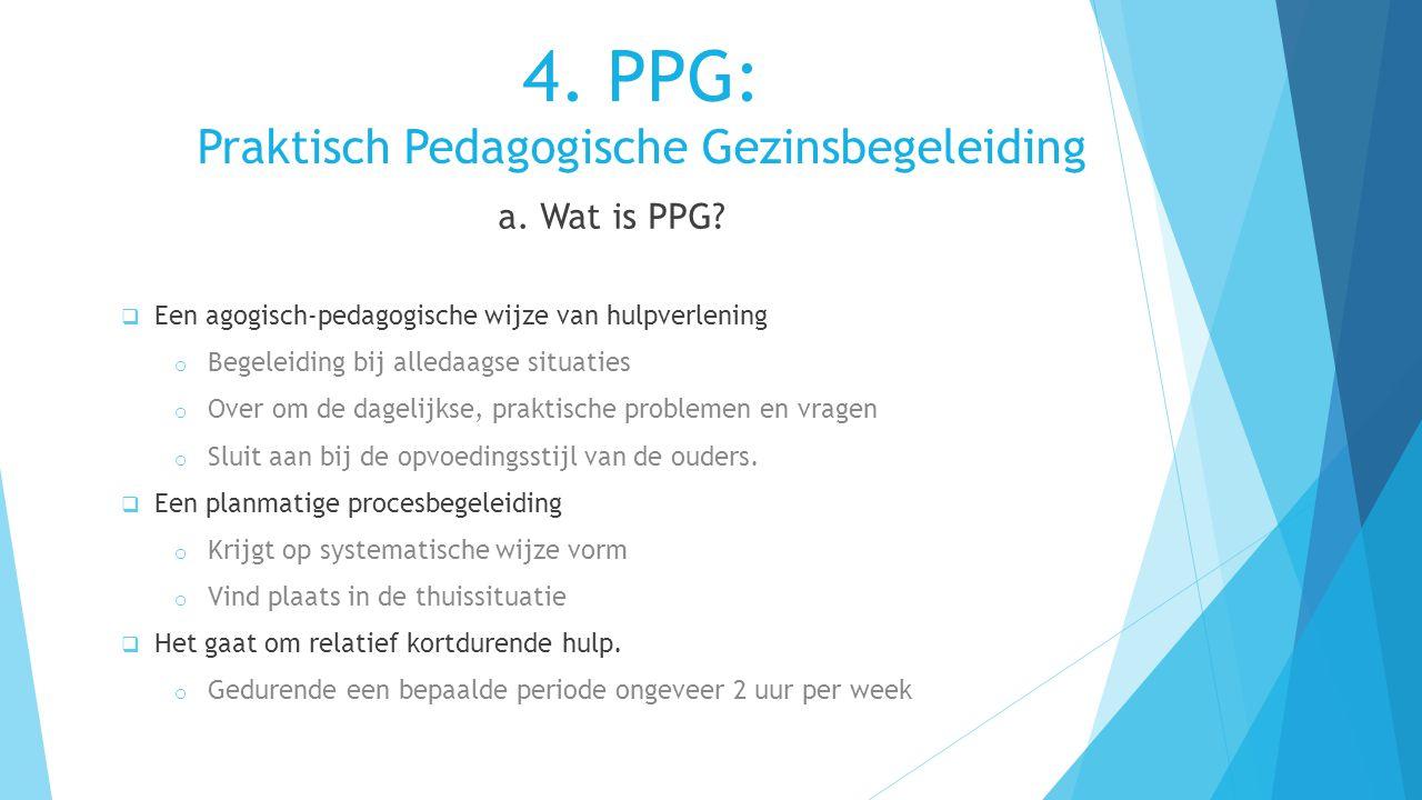 4. PPG: Praktisch Pedagogische Gezinsbegeleiding