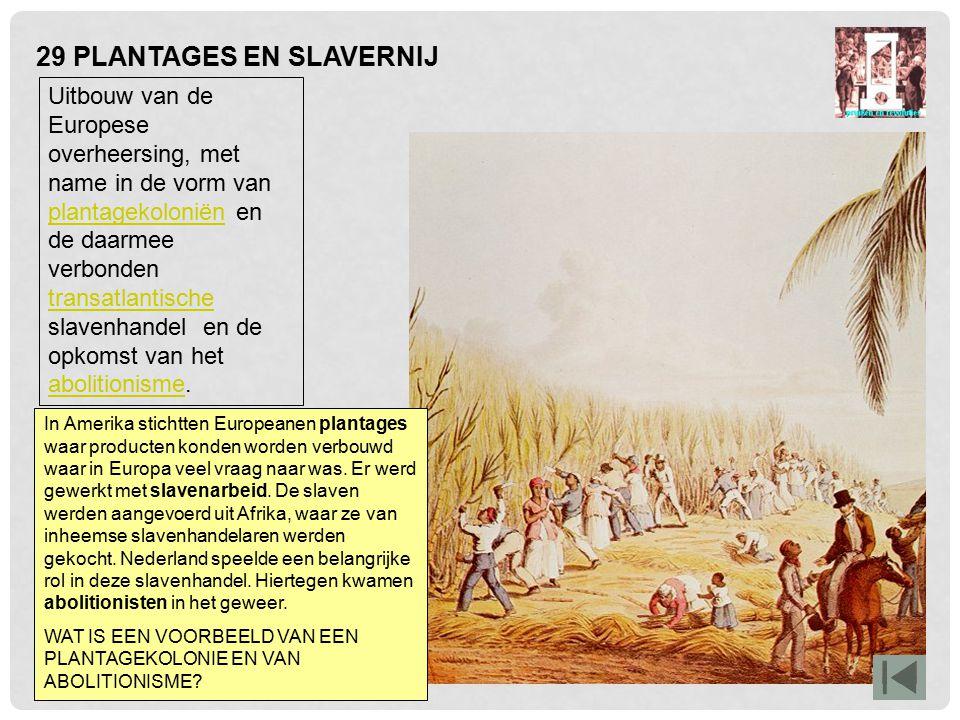 29 PLANTAGES EN SLAVERNIJ