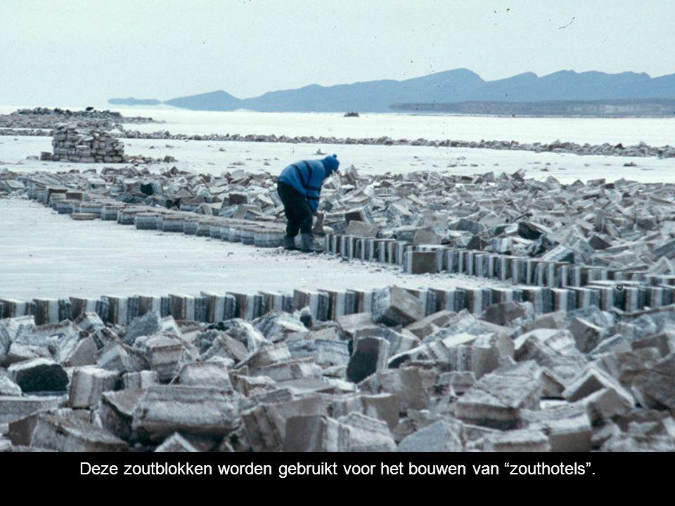 Deze zoutblokken worden gebruikt voor het bouwen van zouthotels .