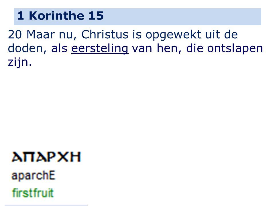 1 Korinthe 15 20 Maar nu, Christus is opgewekt uit de doden, als eersteling van hen, die ontslapen zijn.