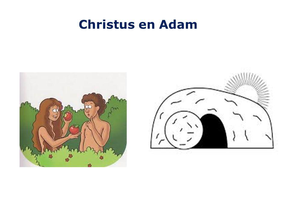 Christus en Adam