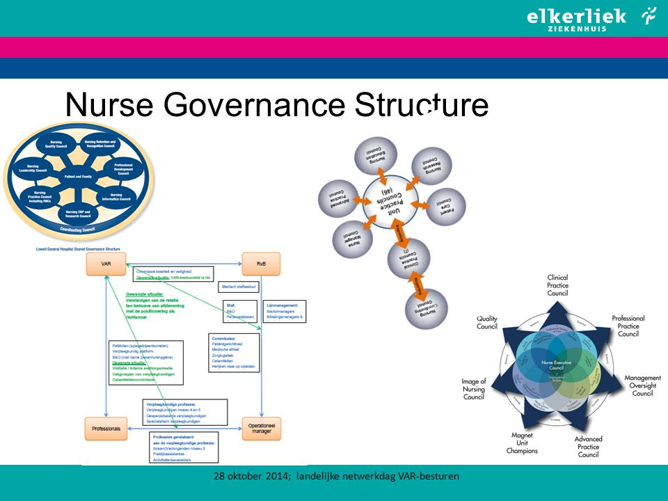 Nurse Governance Structure