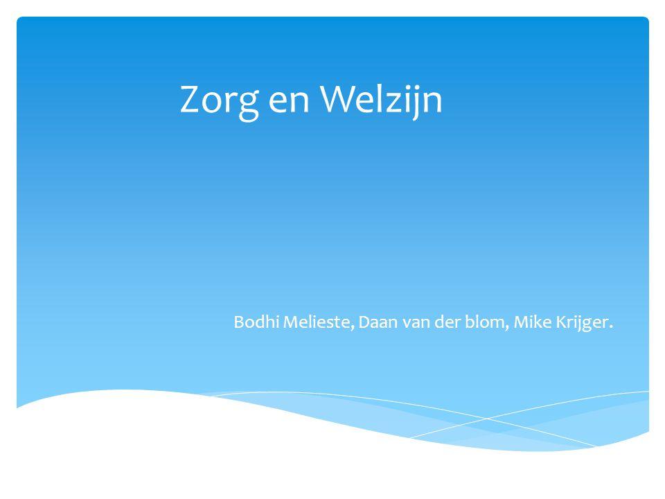 Bodhi Melieste, Daan van der blom, Mike Krijger.