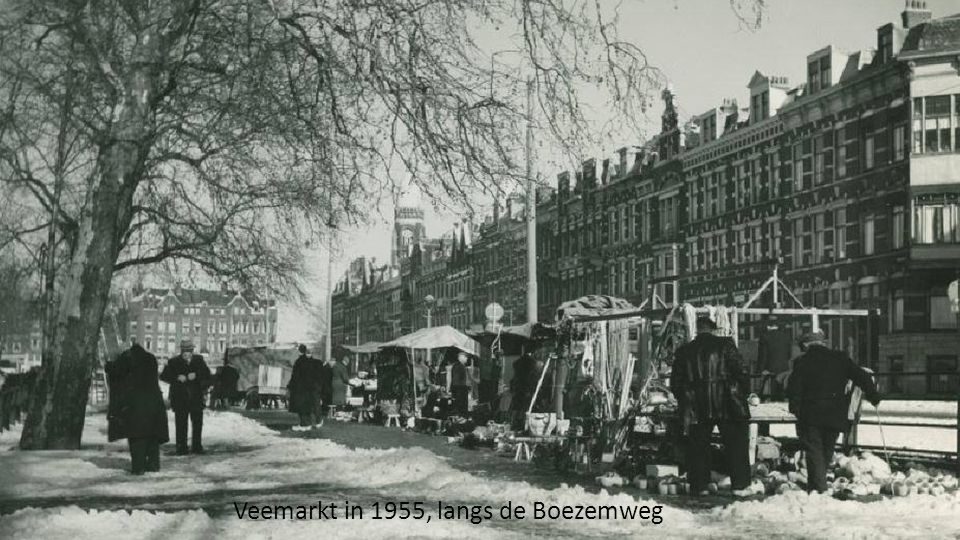 Veemarkt in 1955, langs de Boezemweg