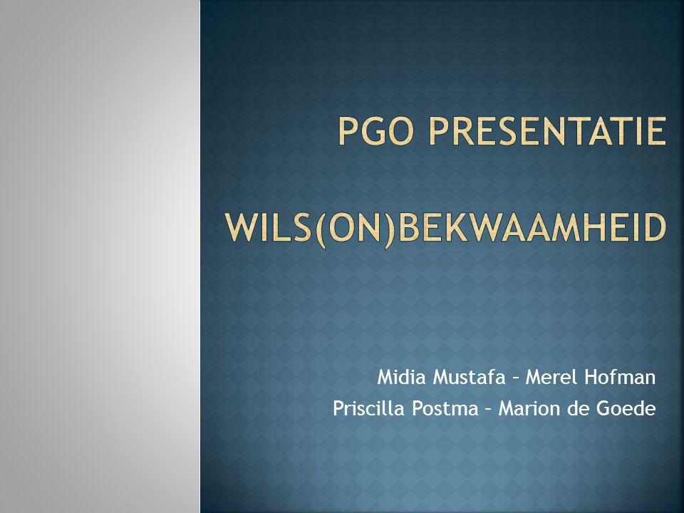 PGO presentatie Wils(on)bekwaamheid