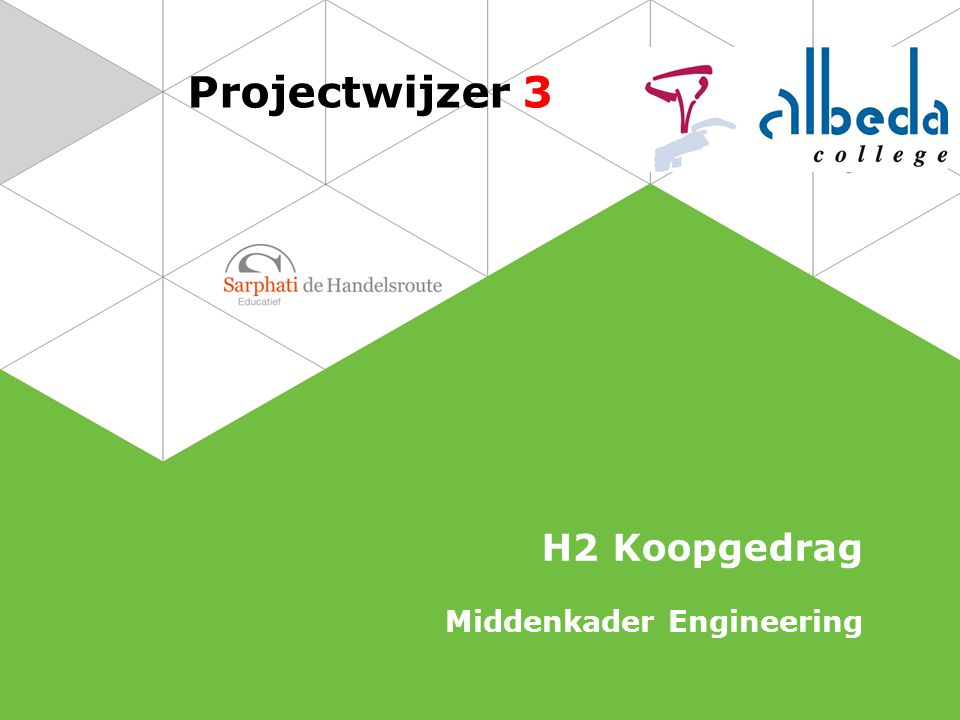 Projectwijzer 3 H2 Koopgedrag Middenkader Engineering