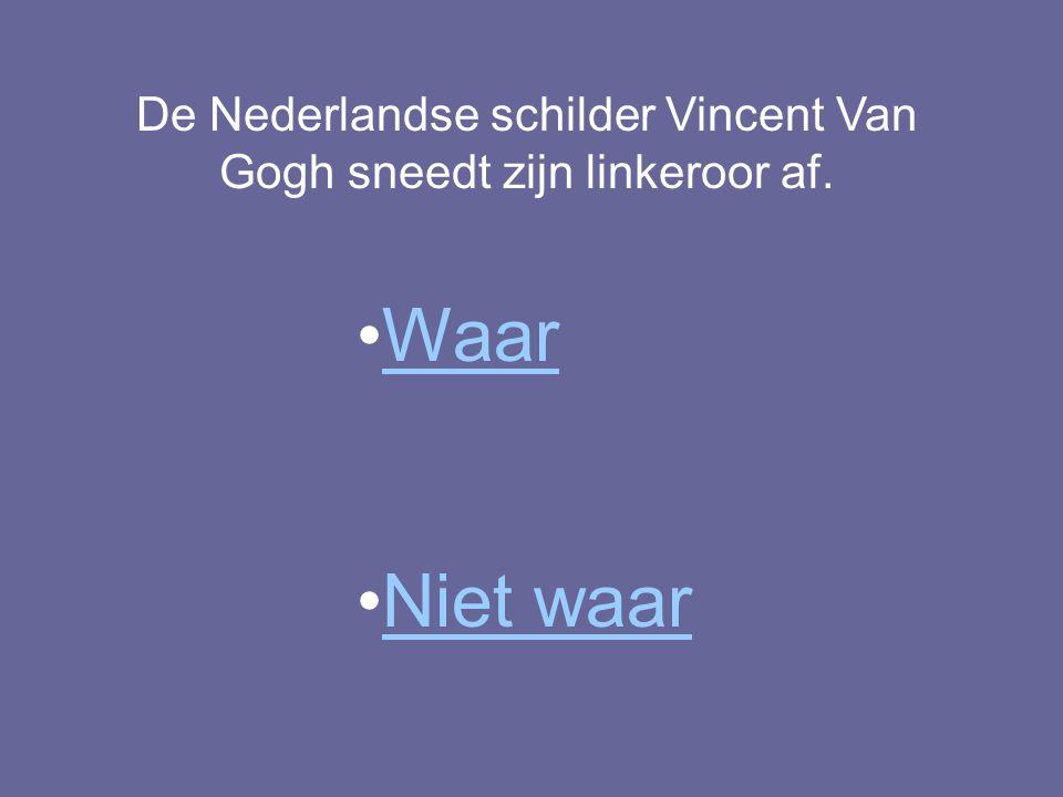 De Nederlandse schilder Vincent Van Gogh sneedt zijn linkeroor af.