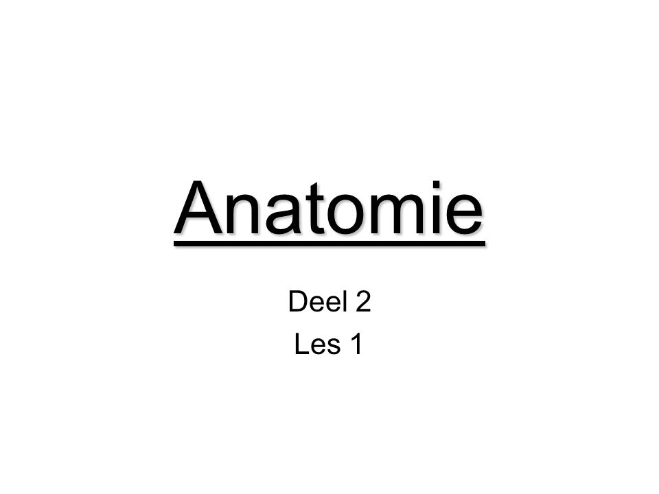 Anatomie Deel 2 Les 1