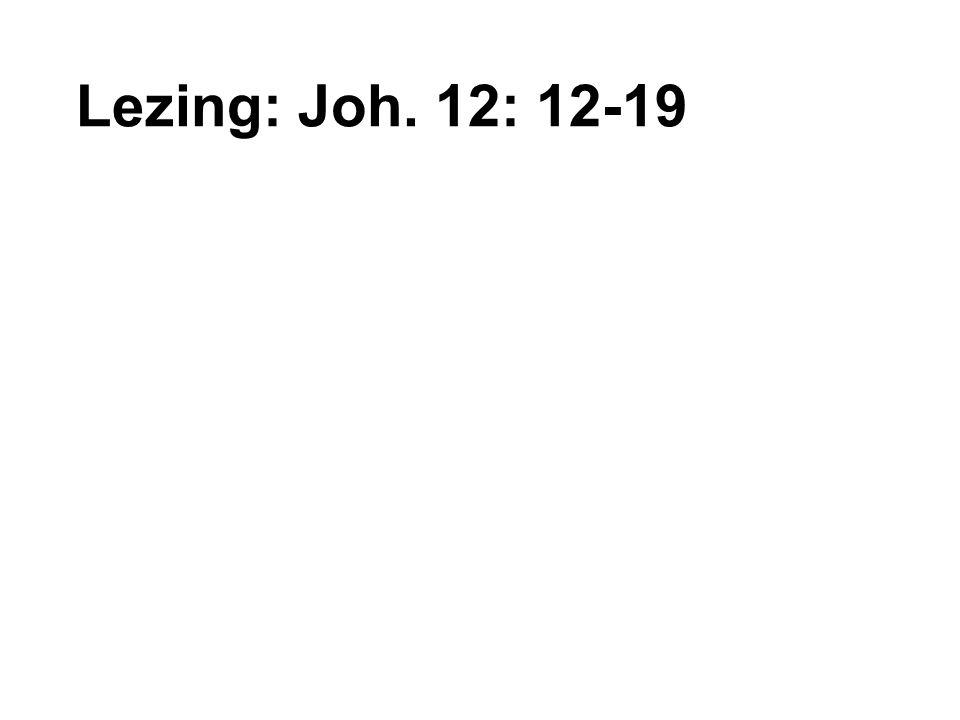 Lezing: Joh. 12: 12-19