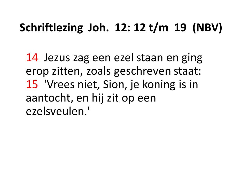 Schriftlezing Joh. 12: 12 t/m 19 (NBV)
