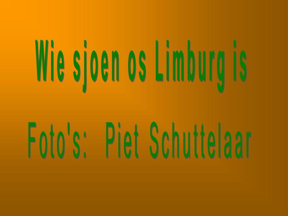 Foto s: Piet Schuttelaar