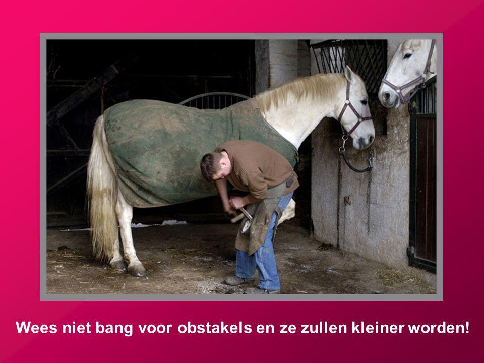 Wees niet bang voor obstakels en ze zullen kleiner worden!