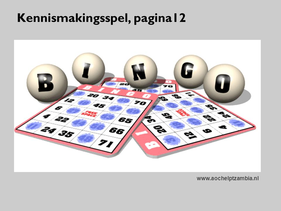 Kennismakingsspel, pagina12