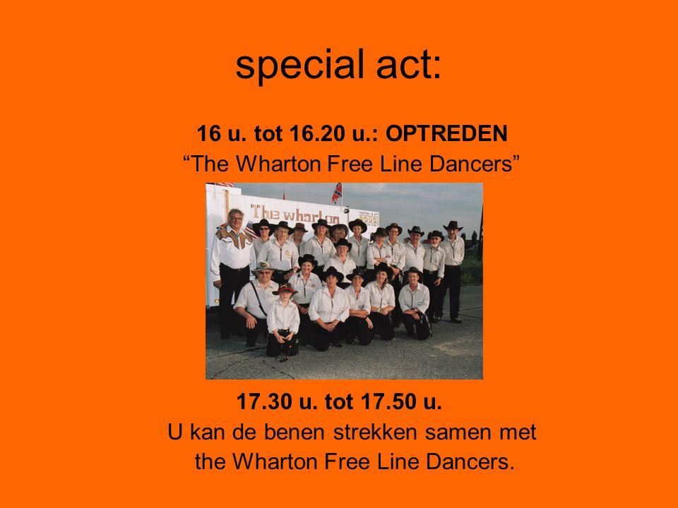 special act: 16 u. tot 16.20 u.: OPTREDEN