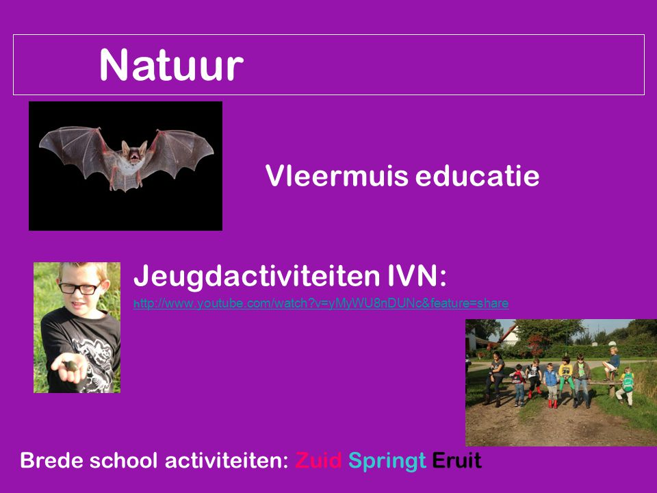 Natuur Vleermuis educatie Jeugdactiviteiten IVN: