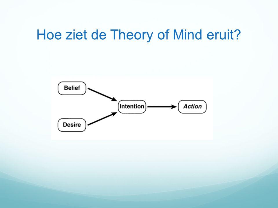 Hoe ziet de Theory of Mind eruit