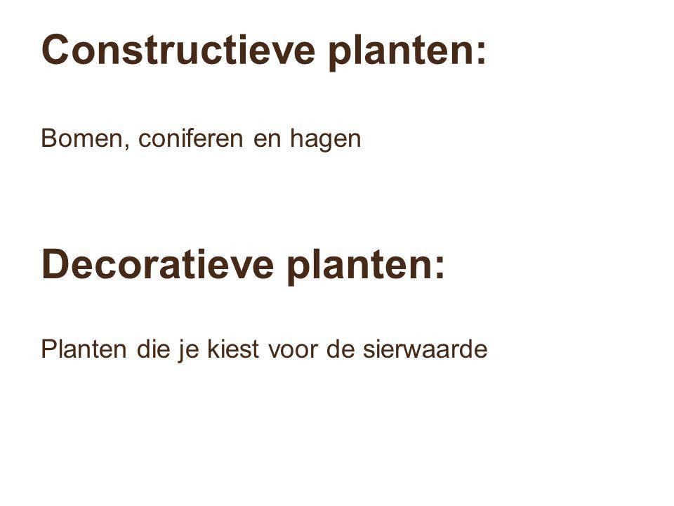 Constructieve planten: