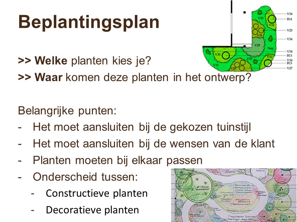 Beplantingsplan >> Welke planten kies je