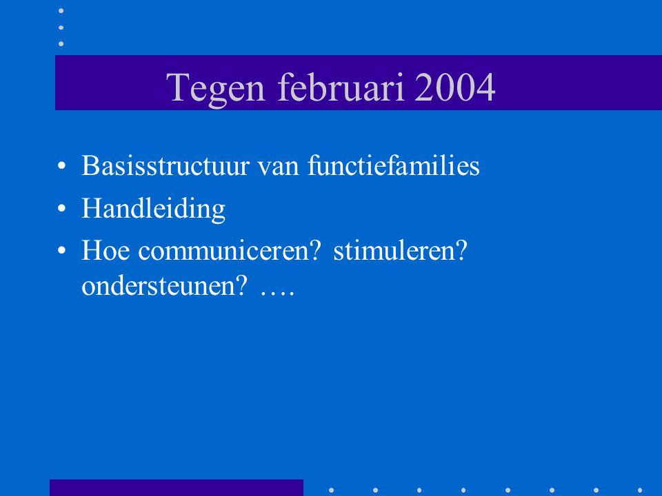 Tegen februari 2004 Basisstructuur van functiefamilies Handleiding