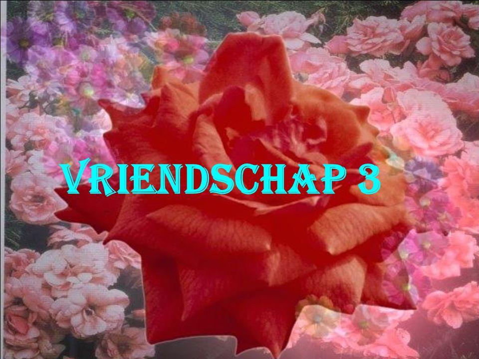 Vriendschap 3