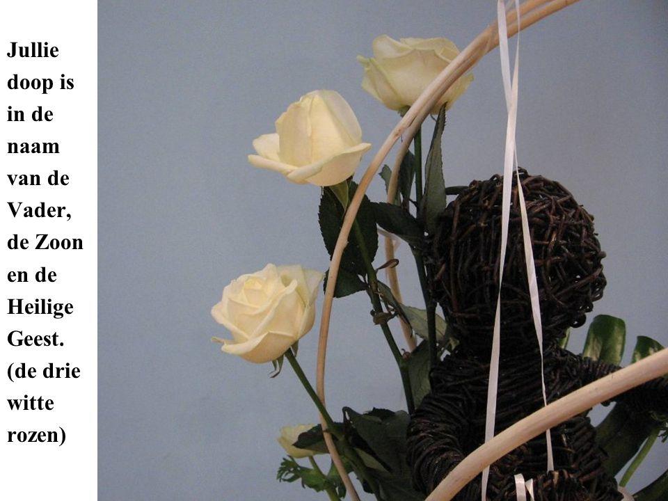 Jullie doop is in de naam van de Vader, de Zoon en de Heilige Geest. (de drie witte rozen)