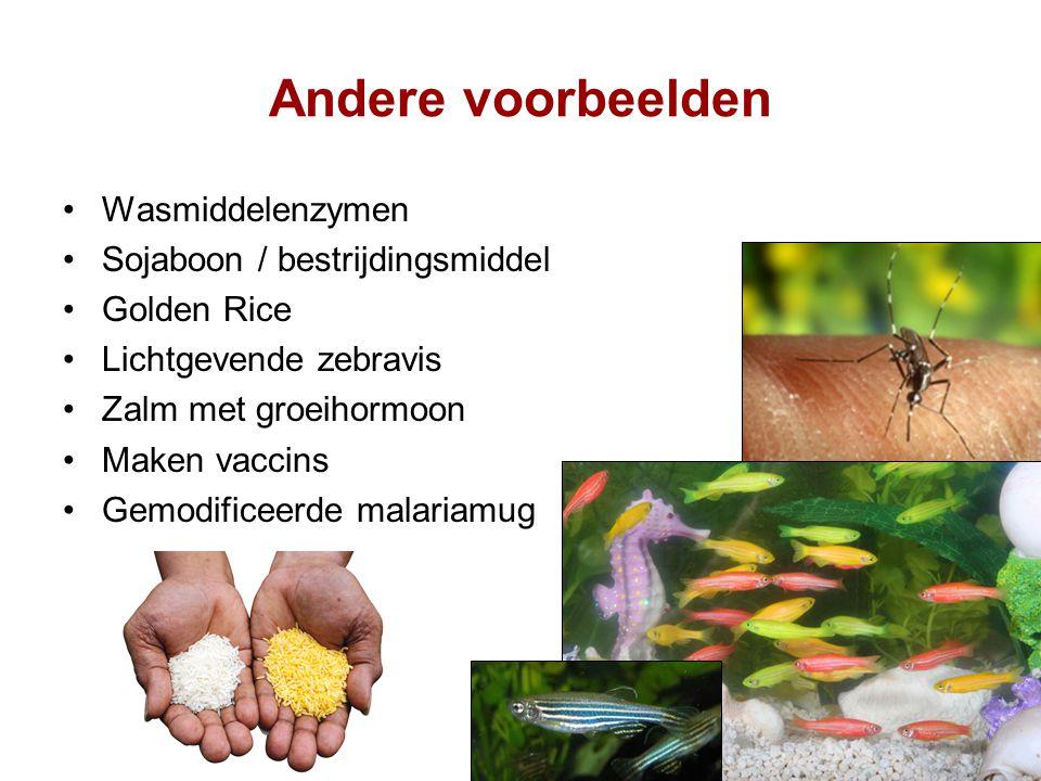 Andere voorbeelden Wasmiddelenzymen Sojaboon / bestrijdingsmiddel
