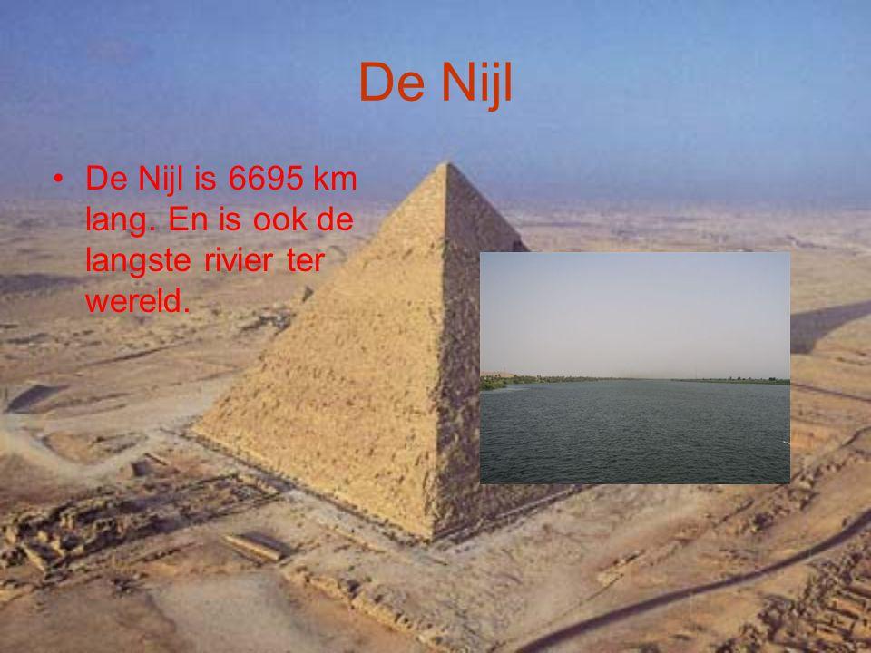 De Nijl De Nijl is 6695 km lang. En is ook de langste rivier ter wereld.