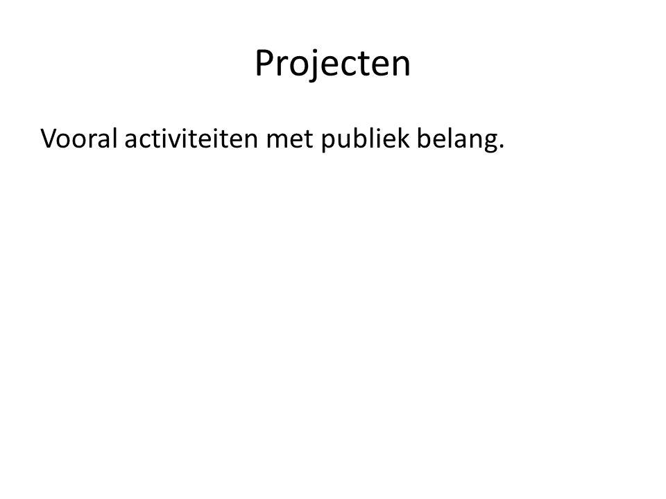 Projecten Vooral activiteiten met publiek belang.