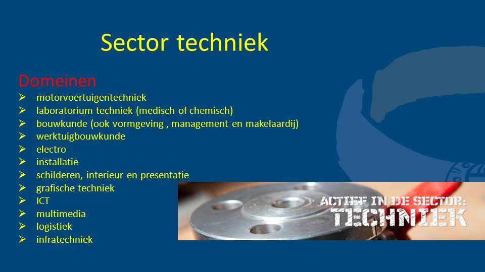 Sector techniek Domeinen motorvoertuigentechniek