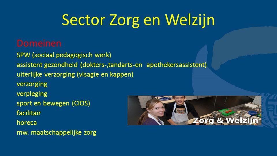 Sector Zorg en Welzijn Domeinen SPW (sociaal pedagogisch werk)