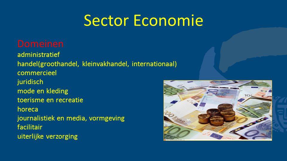 Sector Economie Domeinen administratief