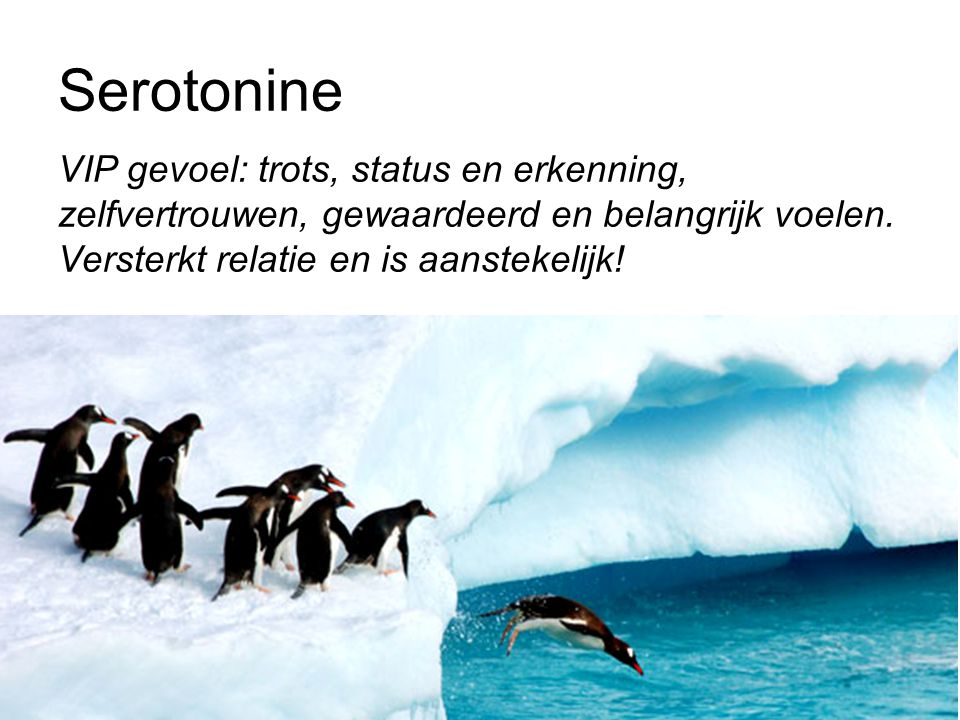 Serotonine VIP gevoel: trots, status en erkenning, zelfvertrouwen, gewaardeerd en belangrijk voelen.
