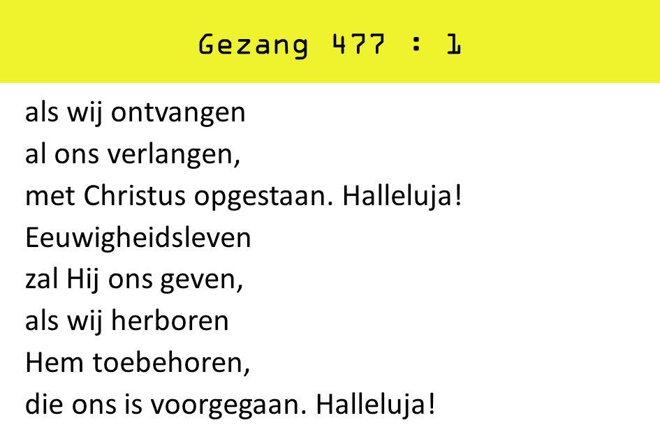 Gezang 477 : 1
