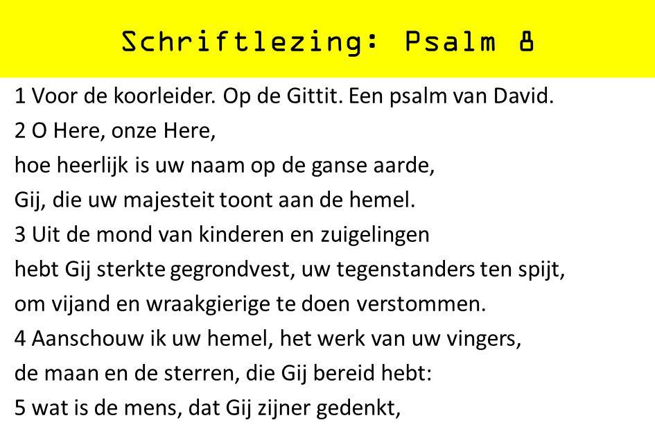 Schriftlezing: Psalm 8