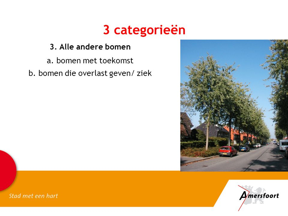 b. bomen die overlast geven/ ziek