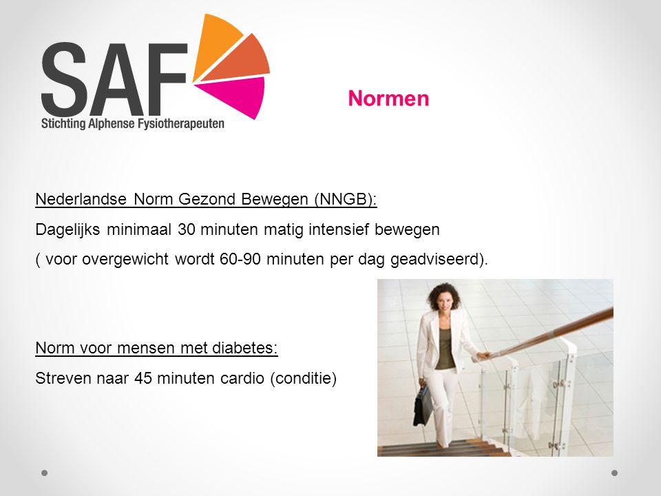 Normen Nederlandse Norm Gezond Bewegen (NNGB):