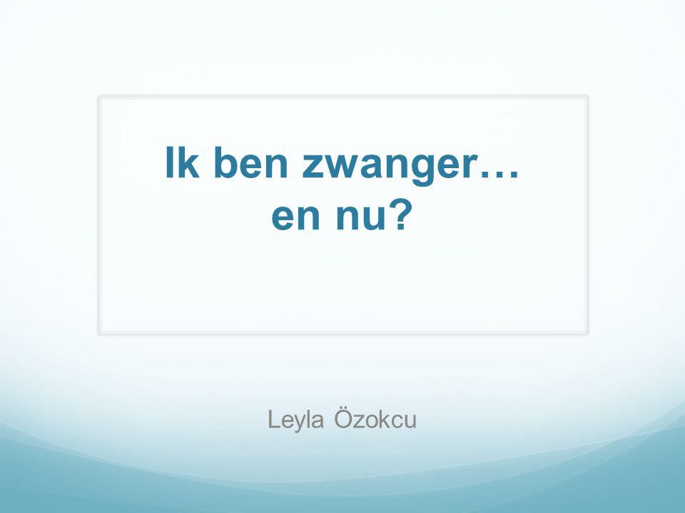 Ik ben zwanger… en nu Leyla Özokcu 08-05-2014