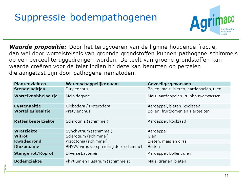 Suppressie bodempathogenen