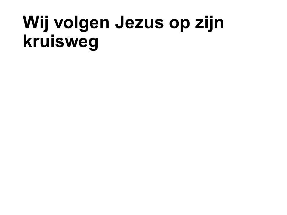 Wij volgen Jezus op zijn kruisweg
