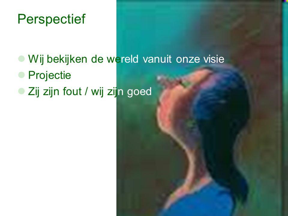 Perspectief Wij bekijken de wereld vanuit onze visie Projectie