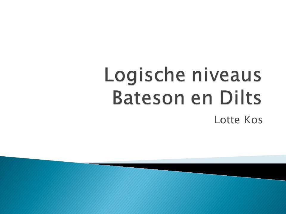 Logische niveaus Bateson en Dilts