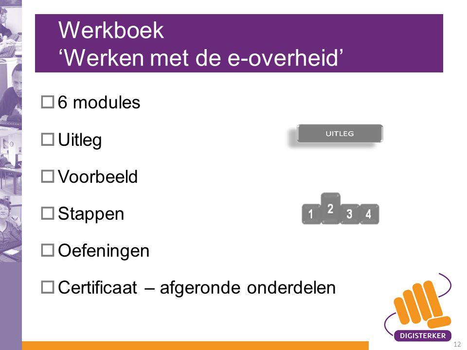 Werkboek 'Werken met de e-overheid'