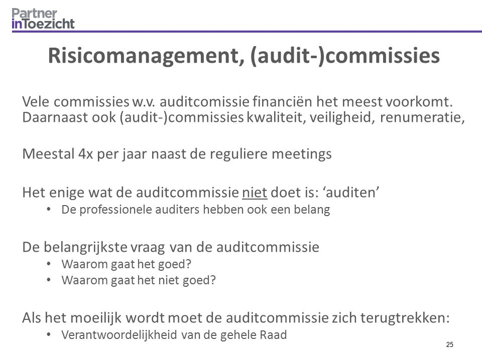 Risicomanagement, (audit-)commissies