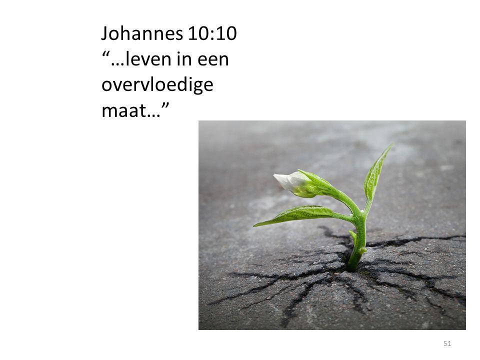 Johannes 10:10 …leven in een overvloedige maat…
