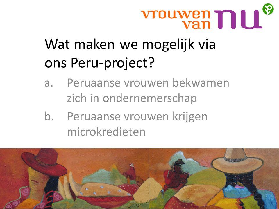 Wat maken we mogelijk via ons Peru-project