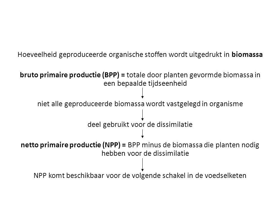 niet alle geproduceerde biomassa wordt vastgelegd in organisme