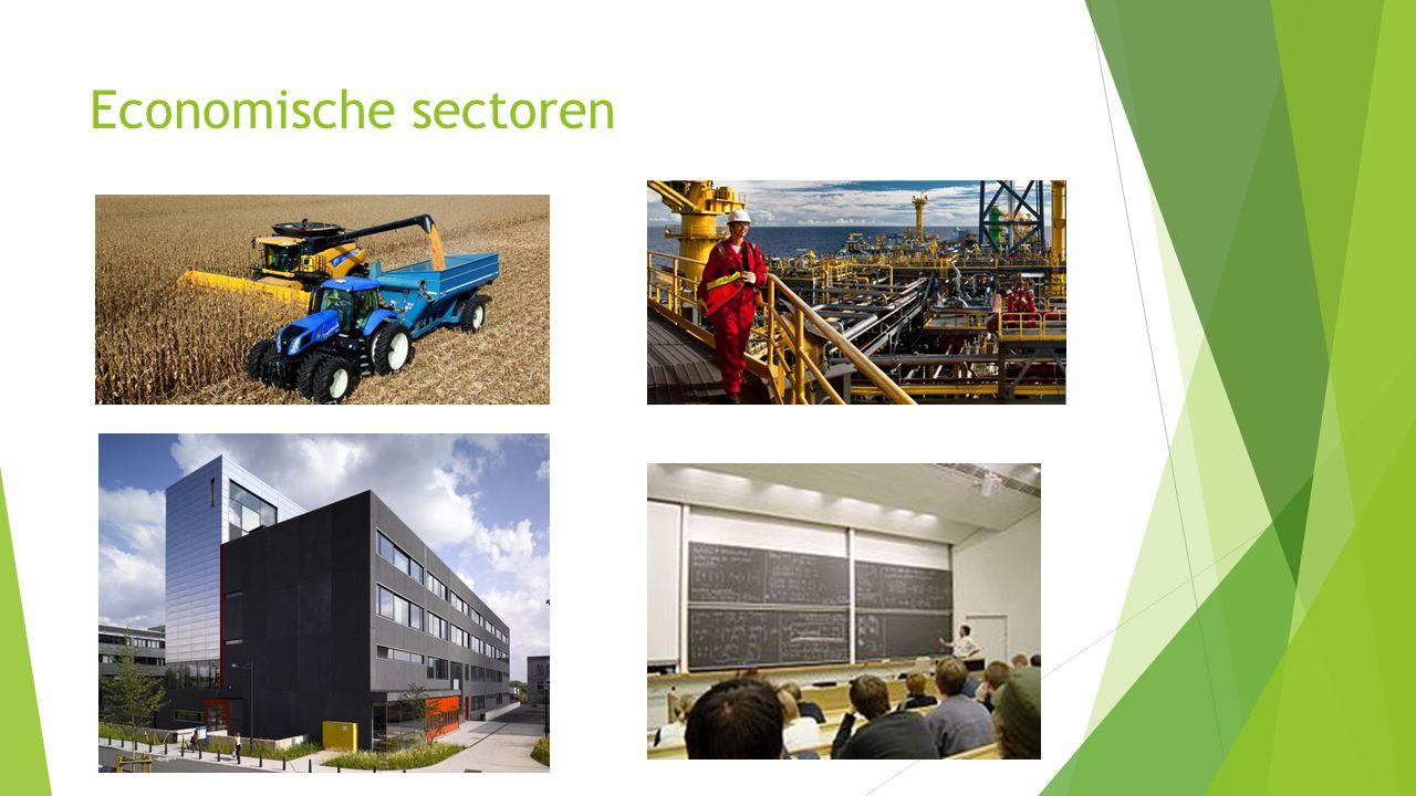 Economische sectoren