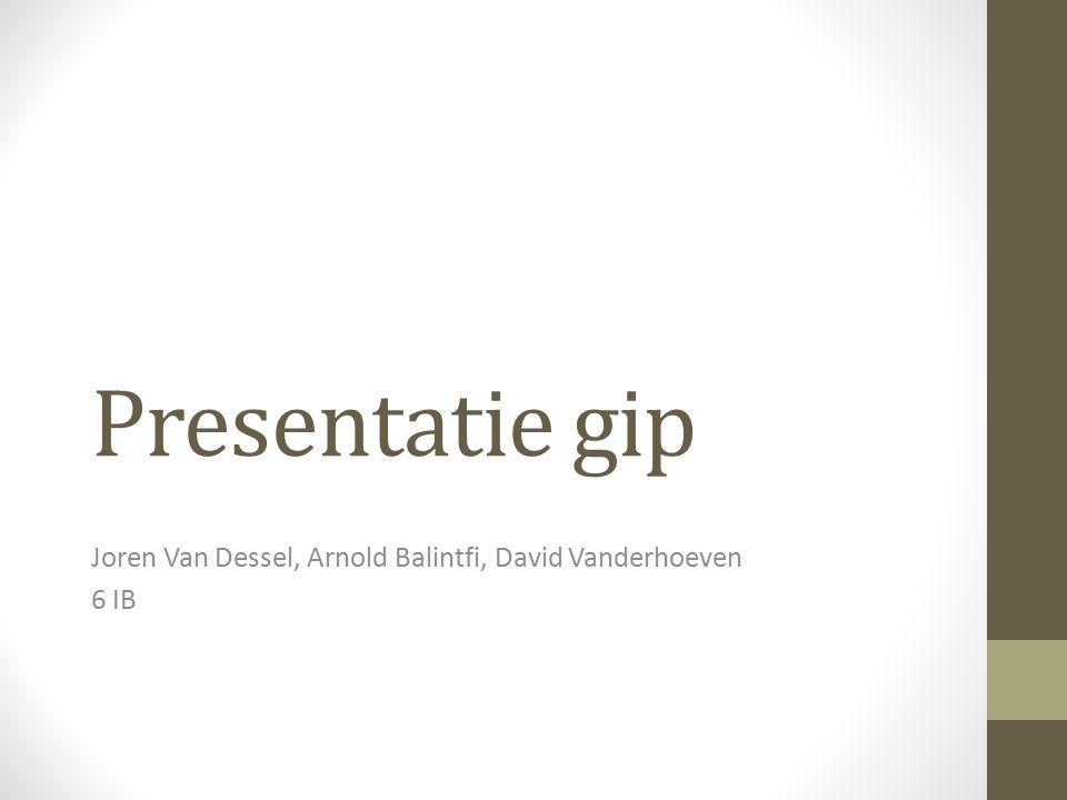 Joren Van Dessel, Arnold Balintfi, David Vanderhoeven 6 IB